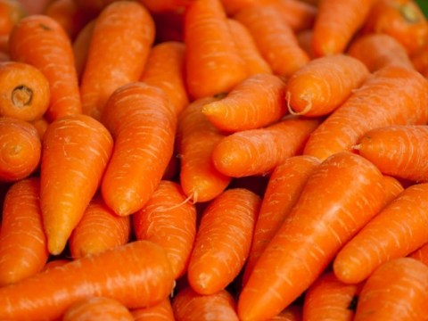 Ten Recipes for Food and Drinks You Can Make With Carrots