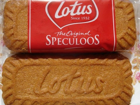 Ten Recipes for Food and Drinks You Can Make With Lotus Biscoff Biscuits