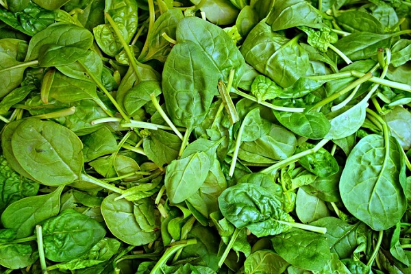 Did You Know Spinach Can Stimulate Hair Growth?