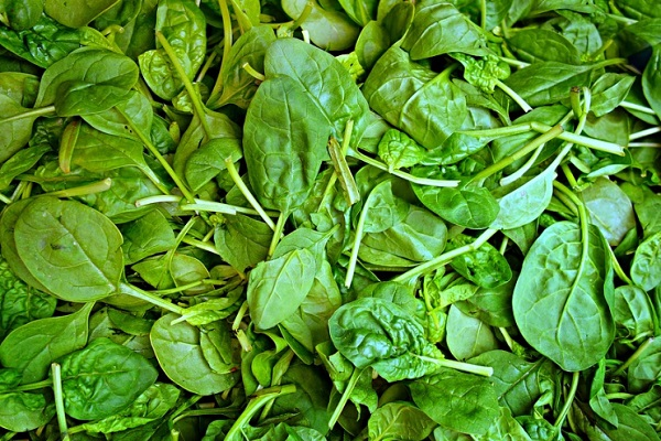 Did you Know Spinach is Good For Your Nails?