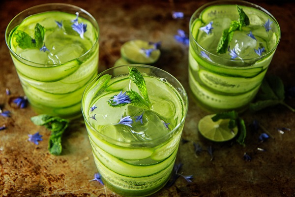 Cucumber Mint Gin and Tonic