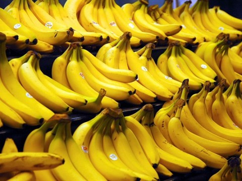 Ten Food and Drinks You Can Make With a Banana