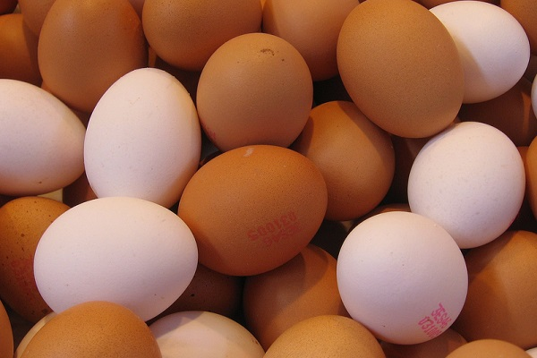 Can Eggs Make You Stronger?