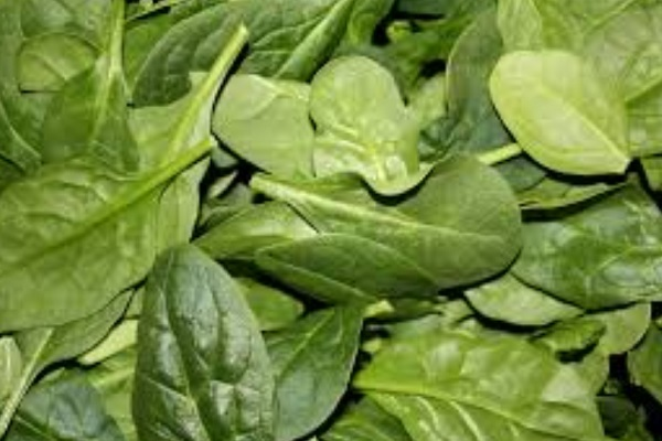 Can Spinach Make You Stronger?