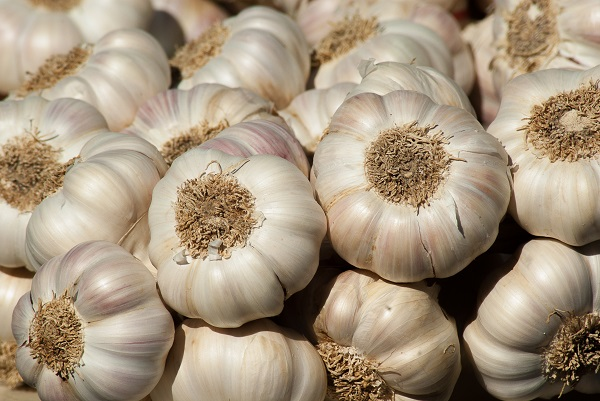 Did You Know Garlic Is An Aphrodisiac?