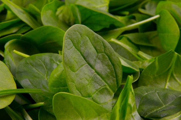 Did You Know Spinach Can Help Relief Stress?