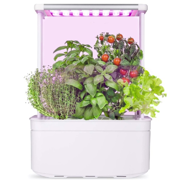 amzWOW Smart Garden Indoor Herb Garden