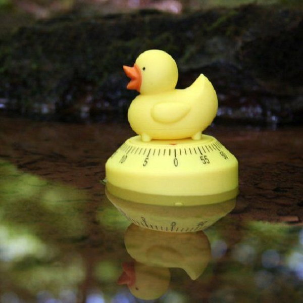 Ten Amazing Duck Kitchen Gadgets That are Simply Quackers
