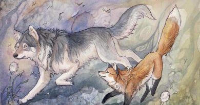 Vanessa Duž: Vuk i Lisica