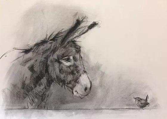 Erik Humkić: Umorni magarac