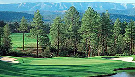 The Rim Golf Club   Arizona   Best In State Golf Course Previous     Next