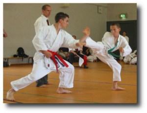 3. Karate