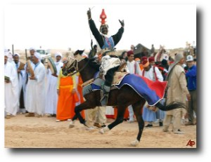 5. Festival Douz, Tunez