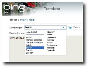 2. Bing Translator