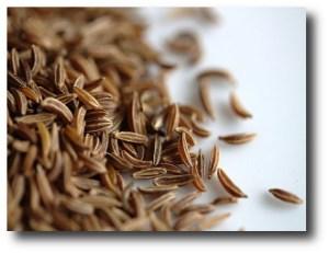 9. Semillas de alcaravea