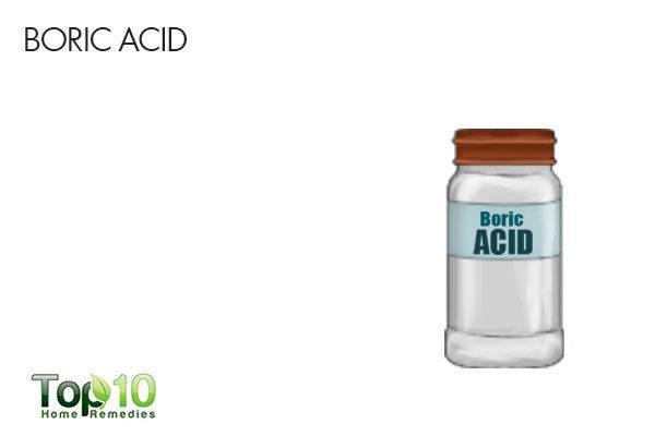 boric acid to exterminate silverfish