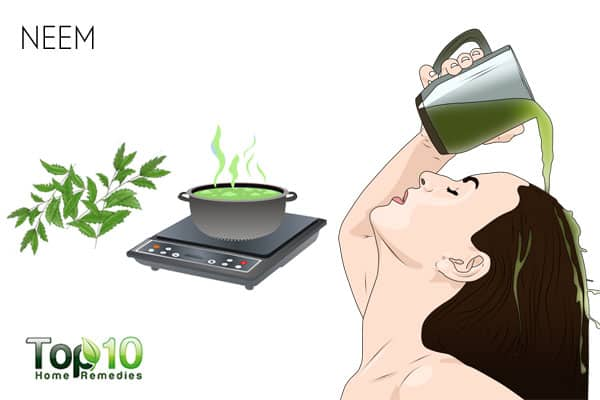 Use neem to treat scalp sores
