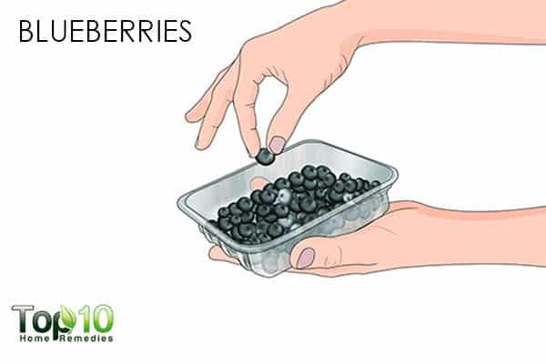 blueberries antioxidant rich