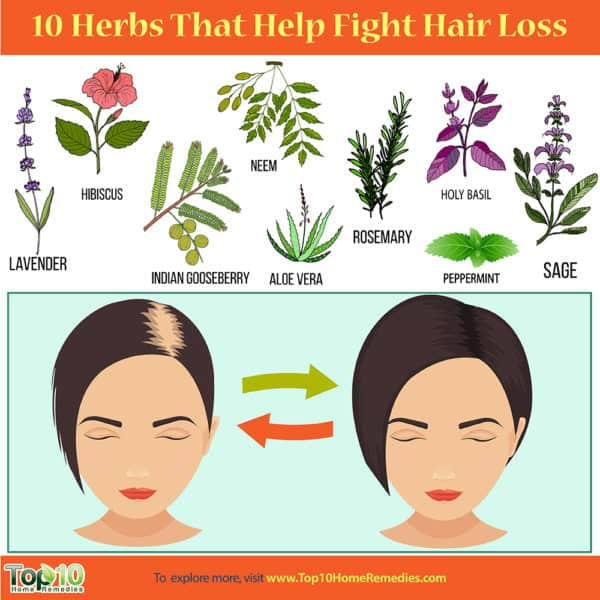 herbs that fight hair loss