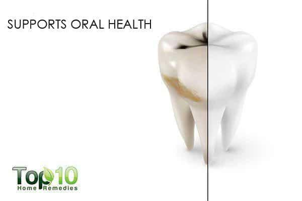 eucalyptus oil for oral health