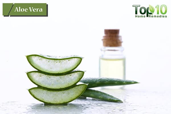aloe vera to treat yeast infection during pregnancy