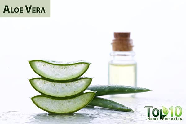 aloe vera for wound care with diabetes
