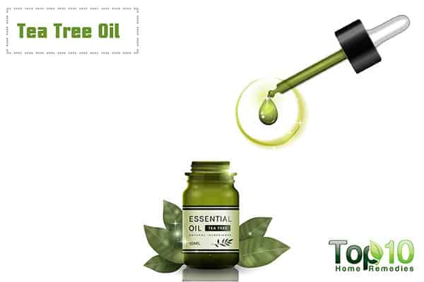 tea tree oil for genital itch