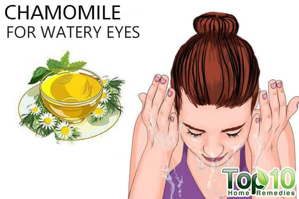 chamomile for watery eyes