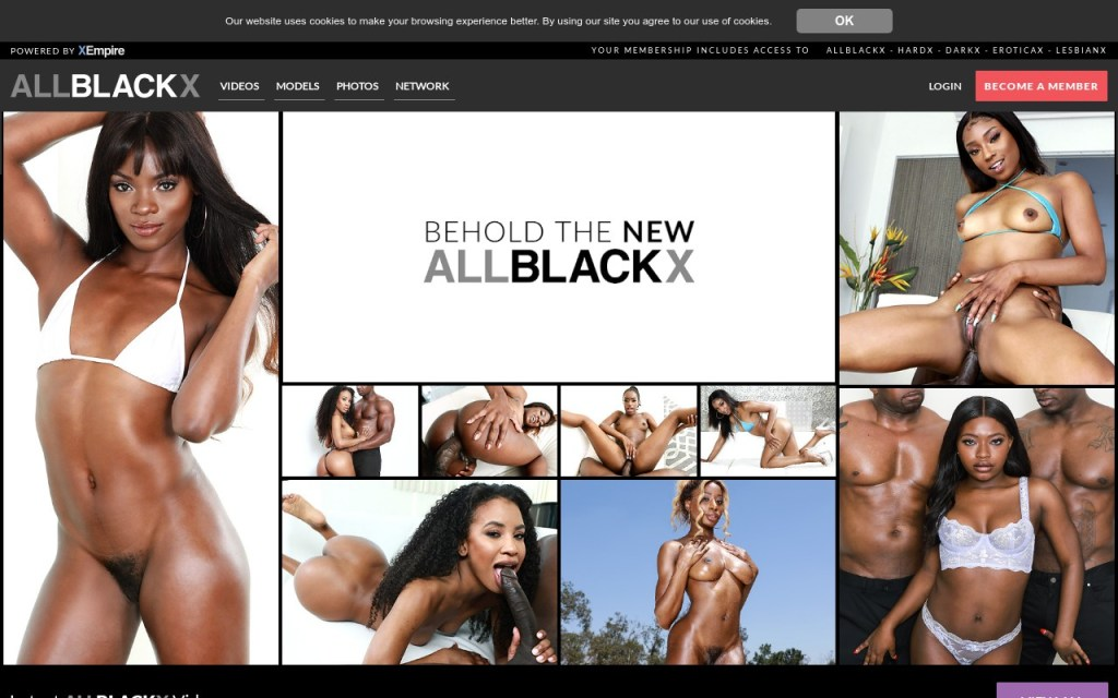AllBlackX - Top Premium Black Porn Sites