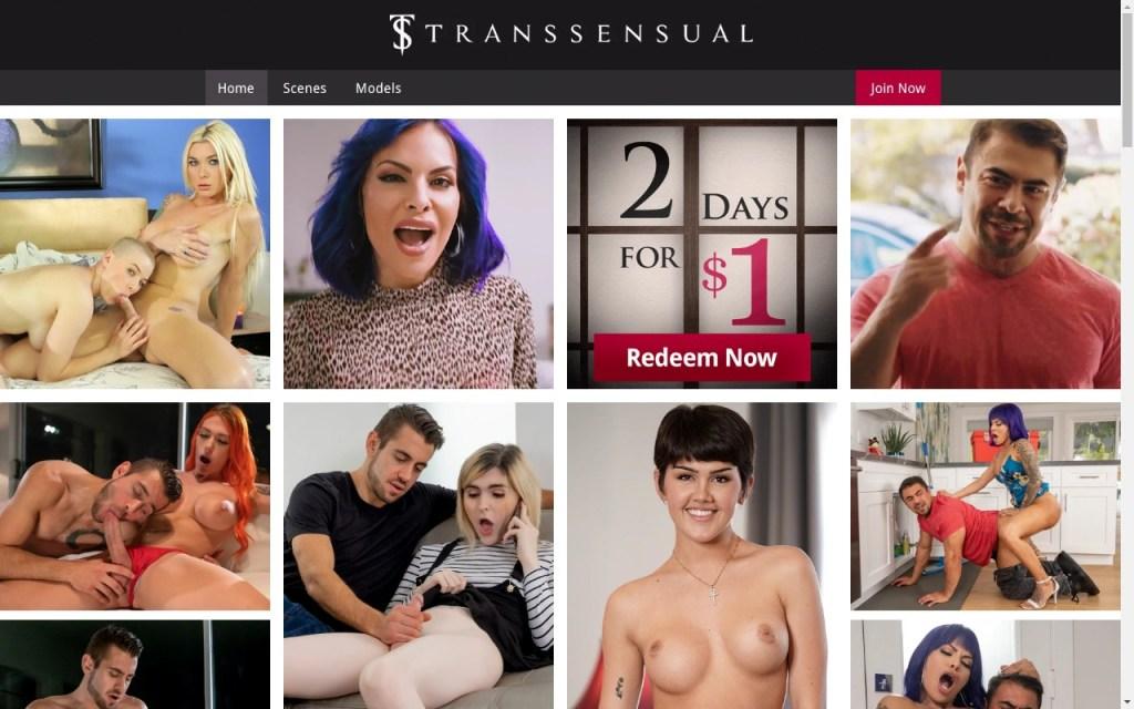 Transsensual - Top Premium Shemale Porn Sites