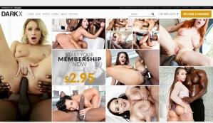 DarkX - Top Premium Black Porn Sites