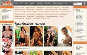 Babepedia - top Pornstar Databases List