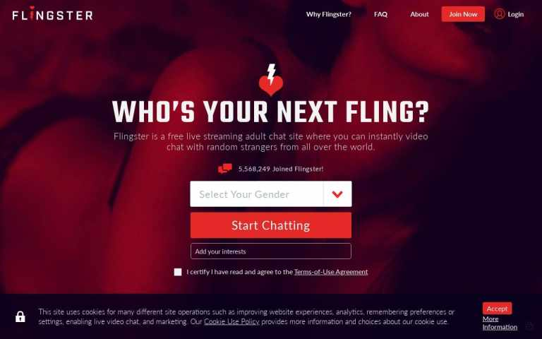 Flingster - top Sex Chat Sites List