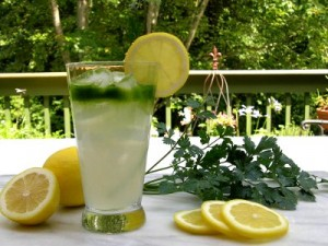 Lemon-Parsley-Cocktail-1
