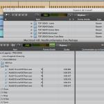 Elastic Audio et Boucles 1