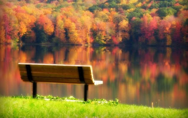 https://i2.wp.com/www.topdreamer.com/wp-content/uploads/2013/09/autumn-photography-image-14-634x396.jpg