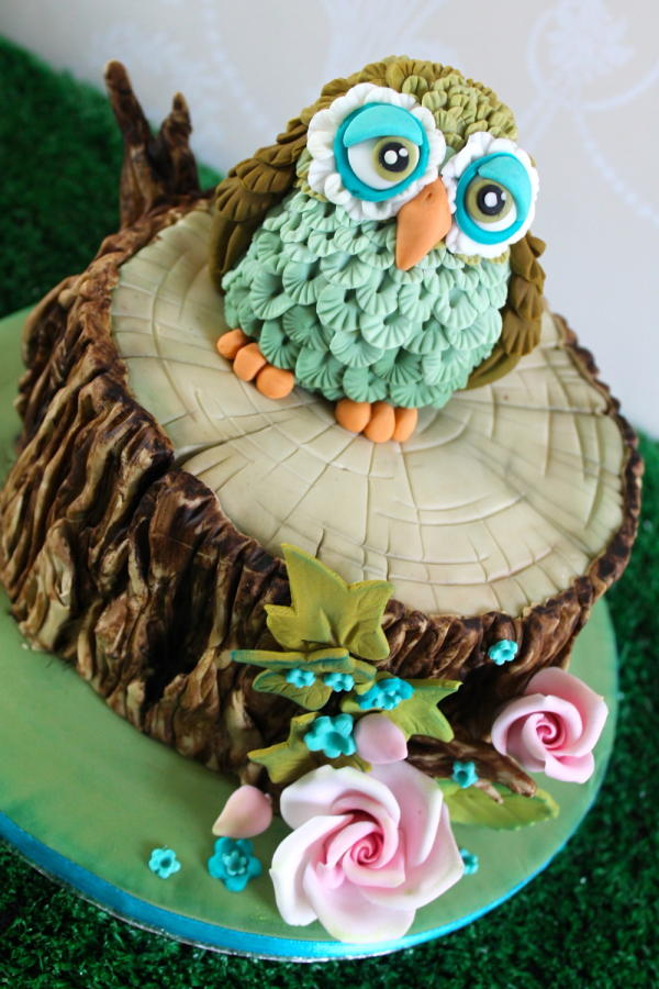 16 Creative Owl Cake Designs