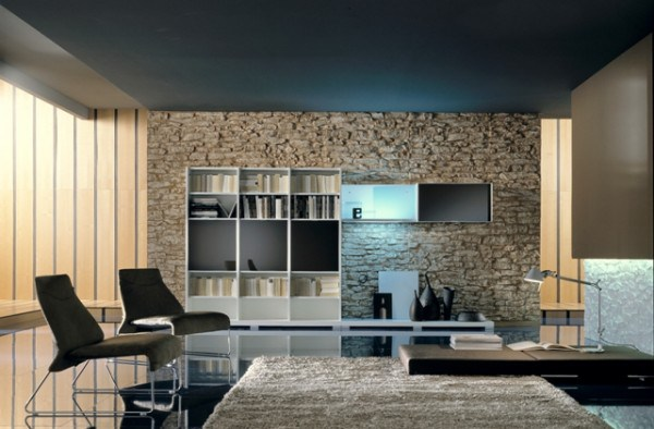 Modern Stone Wall Interior Designs