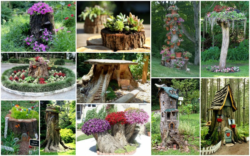 How To Decorate The Garden With Tree Stumps In An Amazing Way