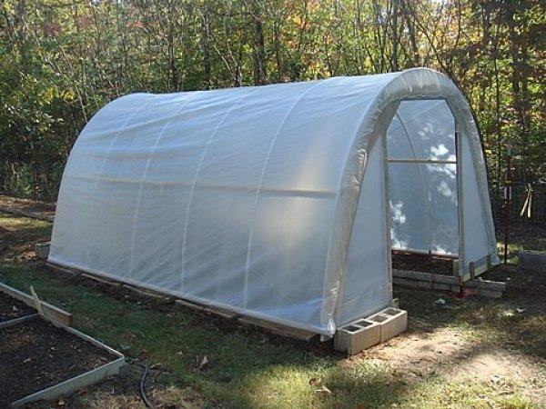 Económico y agradable DIY Invernaderos usted puede hacer fácilmente