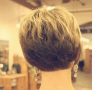 Back View Short Haircuts 4