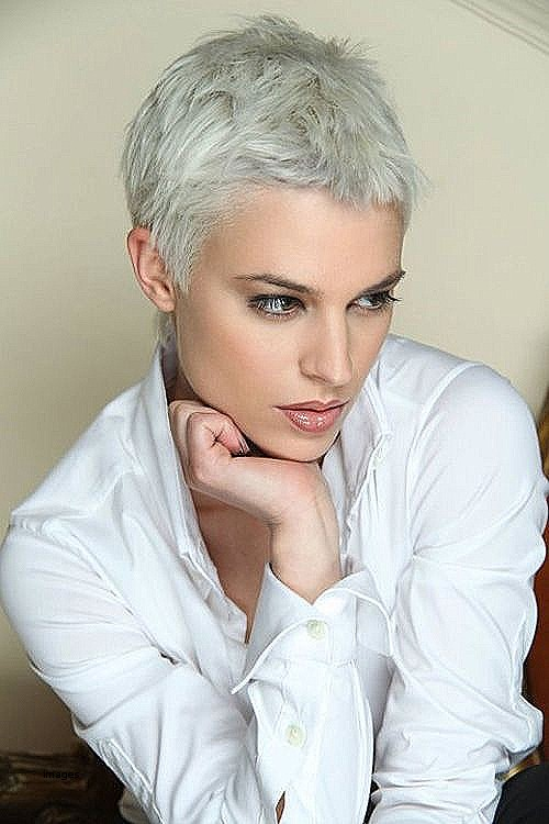 Short Hairstyles For Grey Hair Gallery Awesome 30 Very Short Pixie Haircuts For Women