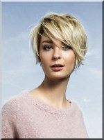 Short Haircuts For Round Face Shape 23