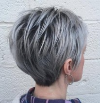 3 Long Silver Pixie With Black Roots