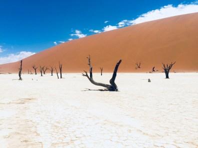 Namibia-65