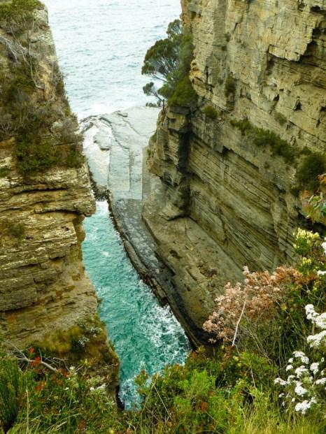 Tasmanie © Yopich
