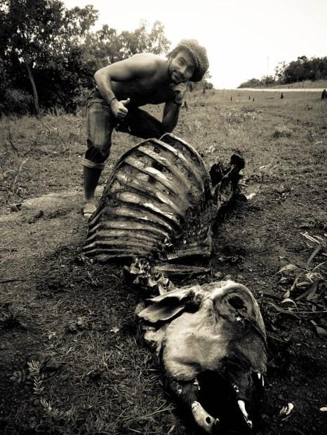 Qui m'a valu des mycoses. Faut être con de se ballader en tongs dans un cadavre de vache ... © Yopich