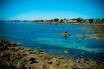 Qui a dit que la mer de Bretagne était truffée de varech ? © Topich