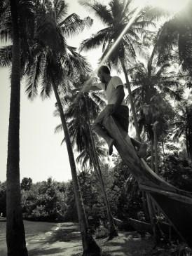La proue © Sandy