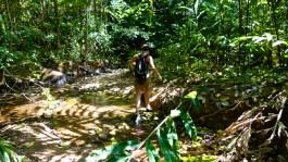 Elod se la donne dans la Jungle © Sandy
